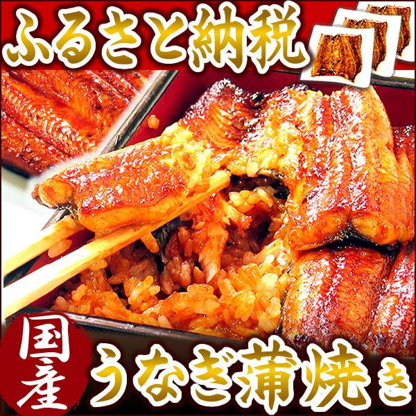 【ふるさと納税】楽天ランキング1位★静岡県 うなぎのたなか うなぎ蒲焼3食 国産うなぎ蒲焼き
