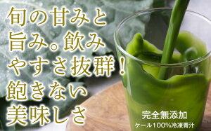 【ふるさと納税】065_MASUDAの旬搾り青汁 グリーンジュース(ケール100%青汁・90ml×20パック【冷凍】