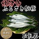 【ポイント10倍】【ふるさと納税】001-102 美味しさ増量!焼津塩さば上 1尾増量!
