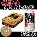 【ポイント10倍】【ふるさと納税】001-405 サッポロビール焼津産サッポロ男梅サワー350ml缶×24本入り1ケース