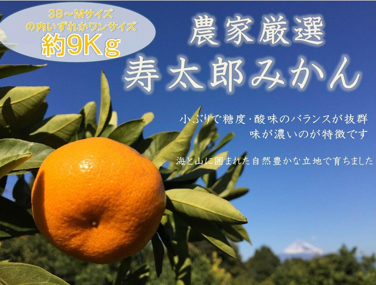 【キャンペーン】【ふるさと納税】001-732 若手農家厳選・寿太郎みかん