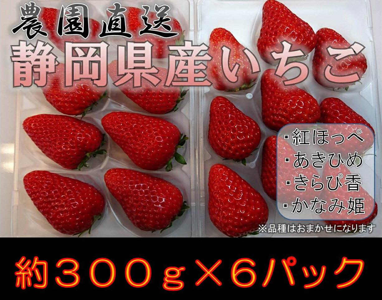 【キャンペーン】【ふるさと納税】001-734 農園直送!静岡県産いちご6パックセット