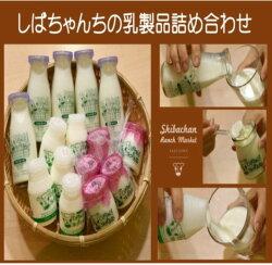 【ふるさと納税】しばちゃんちの乳製品詰合せ(牛乳×5、ヨーグルト×5、飲むヨーグルト×5)