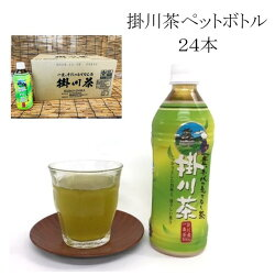 【ふるさと納税】掛川茶ペットボトル