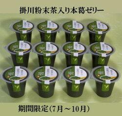 【ふるさと納税】掛川粉末茶入り本葛ゼリー