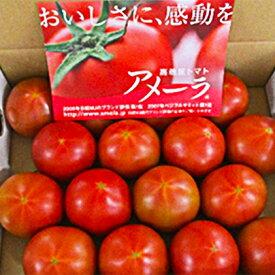 【ふるさと納税】アメーラトマト 【野菜・とまと】
