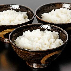 【ふるさと納税】非常食 白いご飯 10食セット  【お米・加工食品・アルファ米・レトルト・インスタント・詰め合わせ】