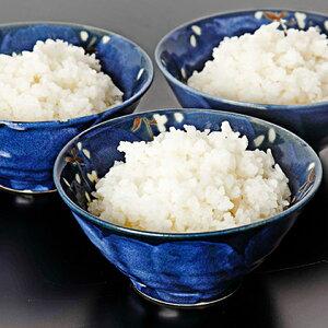 【ふるさと納税】非常食 白いご飯 20食セット  【お米・加工食品・アルファ米・レトルト・インスタント・詰め合わせ】
