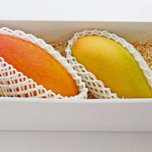 【ふるさと納税】藤枝産マンゴー赤キンコウ・ナンドクマイ詰め合わせ 【果物・フルーツ・マンゴー】 お届け:2020年7月下旬〜2020年8月上旬