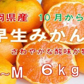 【ふるさと納税】【早期予約 2020年10月出荷】静岡県産 早生みかん 約6kg 【果物類・柑橘類・みかん・フルーツ】 お届け:2020年10月初旬〜2020年11月中旬