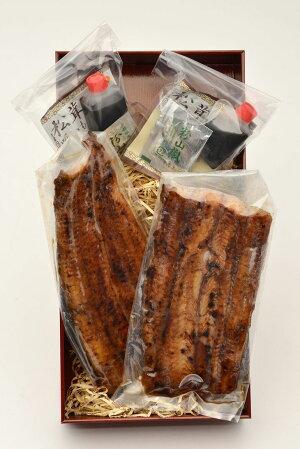 【ふるさと納税】炭火焼うなぎひがし山鰻の蒲焼き