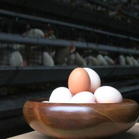 【ふるさと納税】富士山の恵み豊かな環境で、愛情一杯に育てています。「純国産鶏さくらちゃんが産んだ桜色のさくら玉子の五分咲き30個」※1月以降に順次発送予定