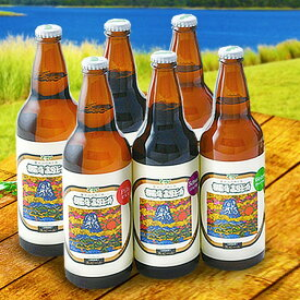 【ふるさと納税】御殿場高原ビール おもてなしセット【お酒 ビール】