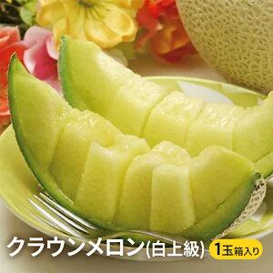 【ふるさと納税】クラウンメロン(白上級)1玉 箱入り 【果物類・メロン青肉・静岡県産・くだもの・フルーツ】
