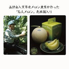 """【ふるさと納税】クラウンメロン""""名人メロン"""" 1玉 ギフト箱入り 【果物類・メロン青肉】"""