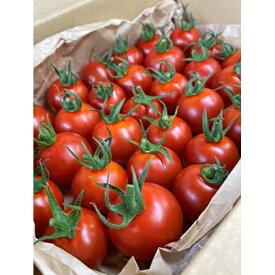 【ふるさと納税】ナグリファームのフルティカトマト(夏届け) 【野菜・トマト】 お届け:2021年5月上旬〜7月末