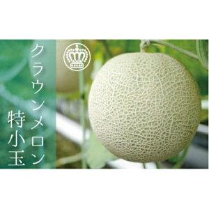 【ふるさと納税】クラウンメロン(白級)小玉(約0.9kg〜)1玉 箱入り 【果物類・メロン青肉】