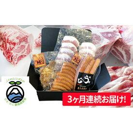 【ふるさと納税】【毎月お届け!】富士金華 豚肉たっぷり味わいセット 【定期便・お肉・ソーセージ・頒布会・加工品】
