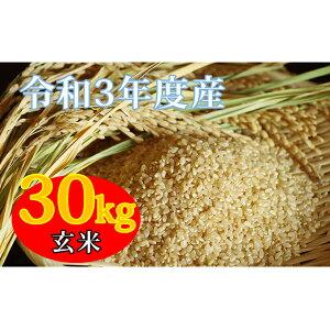 【ふるさと納税】令和3年産新米 コシヒカリ 30kg 玄米 【お米・コシヒカリ・玄米】 お届け:2021年8月下旬より順次出荷