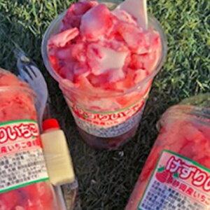 【ふるさと納税】いちごブランド紅ほっぺ使用 けずりいちごセット 【果物類・いちご・苺・イチゴ・紅ほっぺ・けずりいちご・セット】