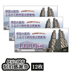 【ふるさと納税】040-001 伊豆の国市宿泊感謝券(12枚)