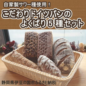 【ふるさと納税】010-040 自家製サワー種使用のこだわりドイツパンのよくばり5種セット