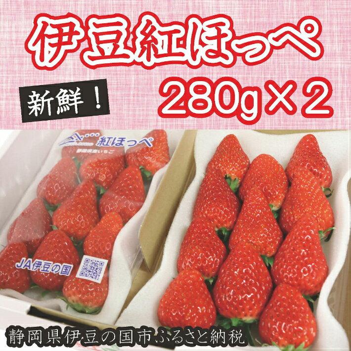 【ふるさと納税】005-004 新鮮いちご!伊豆紅ほっぺ(280g×2パック)