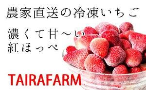 【ふるさと納税】感動をお届けします! タイラファームの冷凍イチゴ