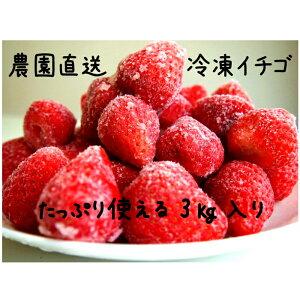 【ふるさと納税】冷凍イチゴ丸ごと3キロ入り
