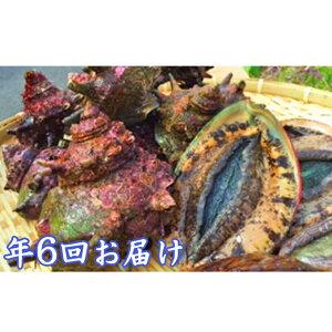 【ふるさと納税】年6回 海からのおくり物 【海老・伊勢エビ・魚介類・あわび・アワビ・鮑・魚貝類・干物】
