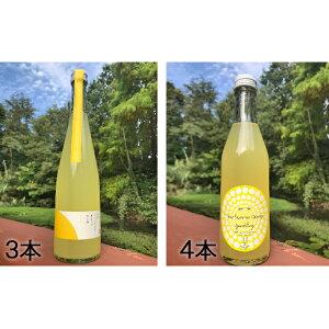 【ふるさと納税】ニューサマーオレンジのお酒セット(3) 【お酒・スパークリング・酒・オレンジ味】