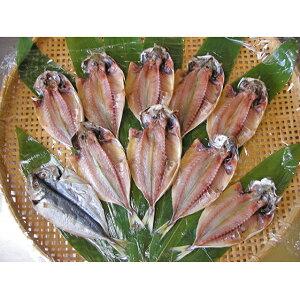 【ふるさと納税】伊豆直送 小あじ干物10尾 S3 【魚貝類・干物・アジ】