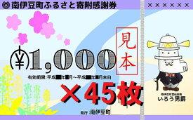 【ふるさと納税】南伊豆町ふるさと寄附感謝券45枚