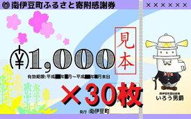 【ふるさと納税】南伊豆町ふるさと寄附感謝券30枚