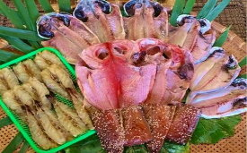 【ふるさと納税】 [Bc-05] 旭洋丸水産 手作り干物セット