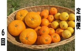 【ふるさと納税】湯の花 みかんメインで贈るフルーツ6回の定期便