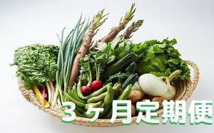 【ふるさと納税】湯の花 旬の野菜セット3か月の定期便