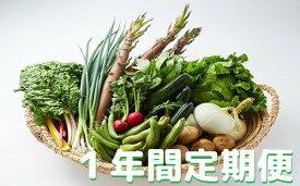 【ふるさと納税】[Ga-02]湯の花 旬の野菜セット1年間の定期便