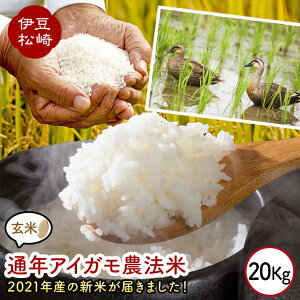 【ふるさと納税】山芳園 天日干し 通年合鴨農法米 うるち玄米 20kg