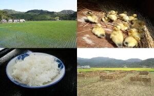 【ふるさと納税】山芳園 天日干し 通年合鴨農法米(うるち玄米)20kg