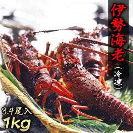 【ふるさと納税】西伊豆産 伊勢海老 3〜4尾入(冷凍)