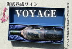 【ふるさと納税】海底熟成ワインVOYAGE【シャトー・モン・ペラ】