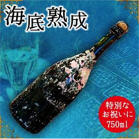 【ふるさと納税】海底熟成酒 VOYAGE【 ドンペリニヨン 白 2010】