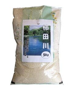 【ふるさと納税】お米「きぬむすめ」20キロ(5キロ×4袋)