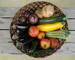 【ふるさと納税】わたなべ農園直送のお米と季節の野菜セット
