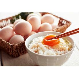 【ふるさと納税】遠州森町 生で食べて欲しい烏骨鶏の卵30個 【卵・烏骨鶏】