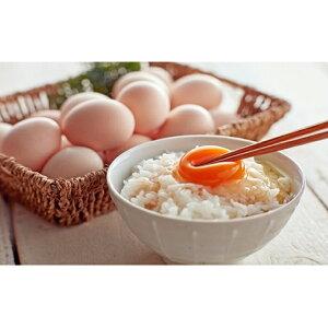 【ふるさと納税】遠州森町 生で食べて欲しい烏骨鶏の卵 20個×12回コース 【定期便・卵】