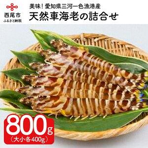 【ふるさと納税】K016.愛知県産天然車海老の詰合せ800g /国産 天然 海鮮 えび エビ 海の幸 冷凍保存