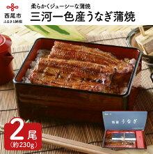 三河一色産うなぎ蒲焼2尾(蒲焼パック冷凍2尾)