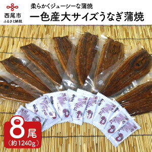 【ふるさと納税】M010.三河一色産大サイズうなぎ蒲焼8尾(蒲焼パック冷凍8尾)
